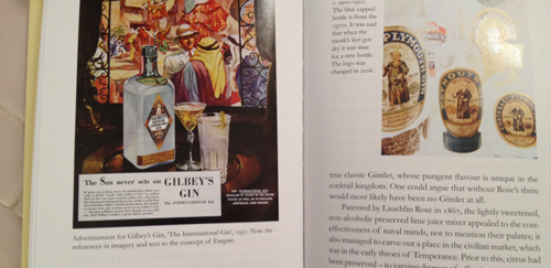 gin a global history book