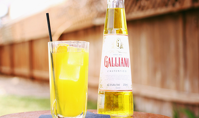 galliano harvey wallbanger